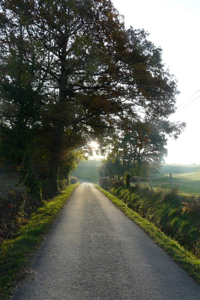 Chemin à Mayran