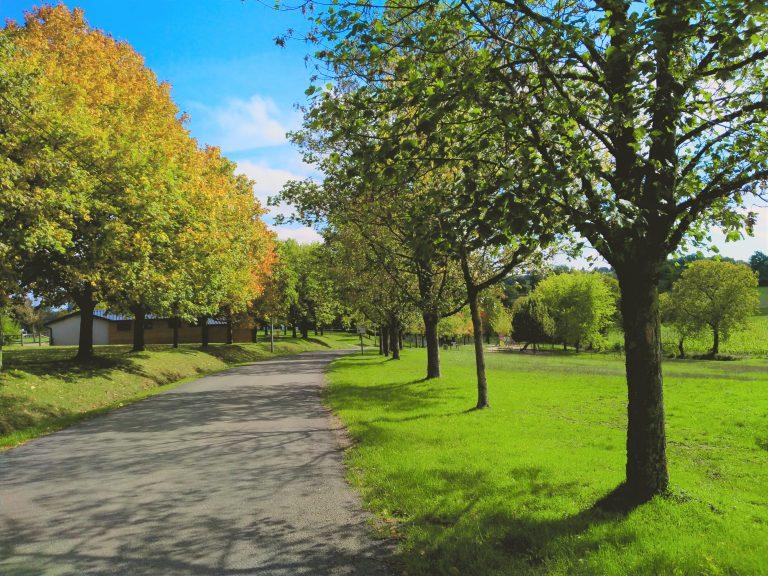 Parc - Hameau Les Janenques